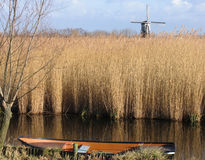Dutch reed landscape 1. A Dutch reed landscape wiht rowing boat Royalty Free Stock Images
