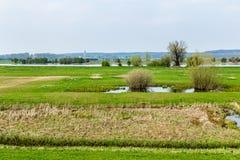 Dutch river landscape near Wageningen. In Gelderland royalty free stock photos