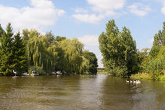 Dutch river in landscape Royalty Free Stock Images