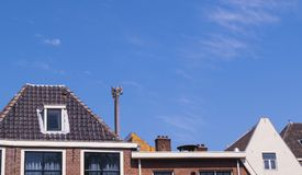 Dutch rooftops with orange and grey colours on a clear blue day. Dutch rooftops with orange and grey colours on a clear blue sumer day in Leiden, The Netherlands Royalty Free Stock Photos