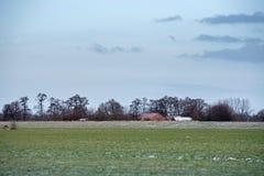 Dutch rural winter landscape with farm house. Stock Images