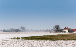 Dutch rural winter landscape with snowy fields Royalty Free Stock Photo