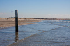 Dutch sandy coast with bollard Royalty Free Stock Photos