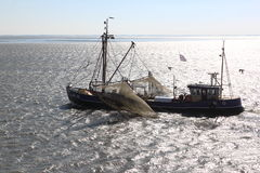 Dutch shrimper sails over dutch Waddensea, Ameland Royalty Free Stock Photos