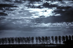 Dutch Sky. In black and white stock photos