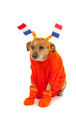 Dutch soccer supporter Royalty Free Stock Photos
