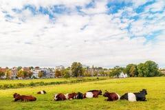 The Dutch Sonsbeek city park in Arnhem Stock Photography