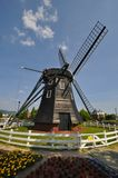 Dutch style wind mills house Royalty Free Stock Image
