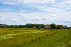 Dutch Summer landscape with green grass and cloudy blue sky.  royalty free stock photo