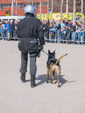Dutch SWAT team member and dog in action Royalty Free Stock Image