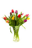 Dutch tulips in glass vase Stock Photography