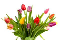 Free Dutch Tulips In Glass Vase Stock Images - 12692604
