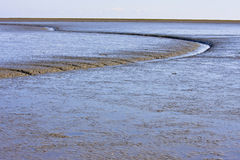 Dutch Waddenzee near Moddergat in Friesland Stock Images