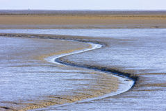 Dutch Waddenzee near Moddergat, Friesland Royalty Free Stock Photos