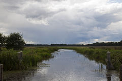 Dutch wetlands with approaching storm. Panoramic typical dutch wetlands with approaching storm Royalty Free Stock Photography