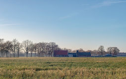 Dutch wide open farmland with farm in winter. Achterhoek. Gelder Royalty Free Stock Photo