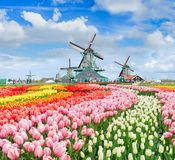 Dutch wind mills Stock Images