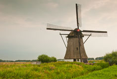 Dutch windmill in a colorful field. Windmill De oude doorn (anno 1700) in the Dutch village of Almkerk Royalty Free Stock Image