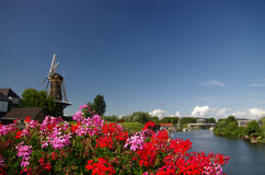 Dutch windmill with flowers Stock Photo