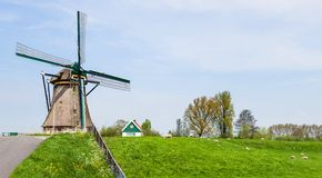 Dutch windmill. Netherlands Royalty Free Stock Image