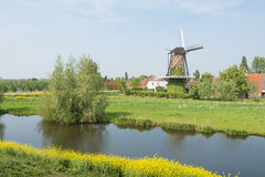 Dutch windmill in the spring season Stock Image