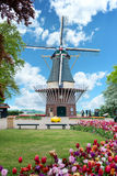 Dutch Windmill Spring. Traditional dutch windmill with wooden shoe and tulips on the foreground, springtime in keukenhof gardens, lisse, the netherlands Stock Images