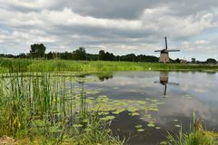 Dutch windmill in the summer. Dutch windmill during the summer time and its water reflection in the pond Stock Photography