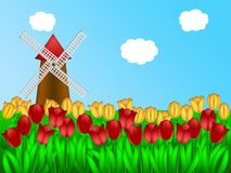 Dutch Windmill in Tulips Field Farm Illustration Stock Photography