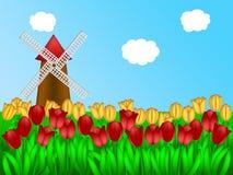 Dutch Windmill in Tulips Field Farm Illustration. Dutch Windmill in Holland Tulips Field Farm Illustration Stock Photography