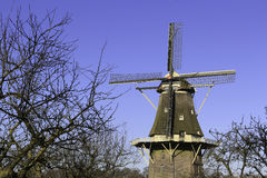 Dutch Windmill. In Vilsteren, the Netherlands, with willows in front Royalty Free Stock Photos