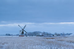 Dutch windmill in winter Royalty Free Stock Image