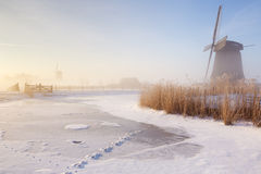 Dutch windmills in a foggy winter landscape in the morning Royalty Free Stock Photo