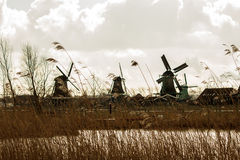 Dutch windmills with hay in the foreground. Dramatic scenery depicting typical dutch landscape. The four windmills with white clouds background offer a nice Stock Image