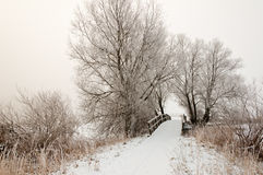 Dutch winter landscape with a small wooden bridge Royalty Free Stock Photography