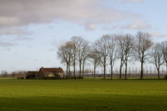 Dutch winter landscape Royalty Free Stock Photo