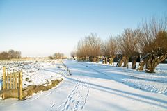Dutch winterlandscape in the Netherlands Stock Images