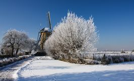 Dutch winterlandscape with windmill Royalty Free Stock Photography