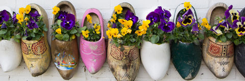 Dutch wooden clogs Stock Image