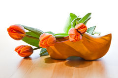 Dutch wooden shoe and orange tulips. Greetings from Holland - Dutch wooden shoe and orange tulips with white background on wooden table Royalty Free Stock Photo