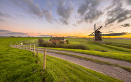 Dutch Wooden windmill in flat grassy landscape Royalty Free Stock Images
