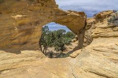 Dutchmans łuk w San Rafael pęcznieniu Utah obrazy royalty free