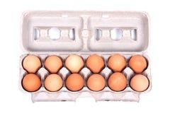 Dutzend Bio-Eier in einem Kasten Stockbild