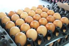 Dutzend des Eies verkaufte im Regal im grocerystore Lizenzfreie Stockfotografie