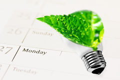 Duurzame ontwikkeling, blad van lightbulb royalty-vrije stock foto