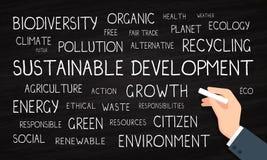 Duurzame ontwikkeling, milieu, ecologie - woordwolk - krijt en bord vector illustratie
