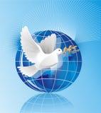 Duva av fred Royaltyfri Foto