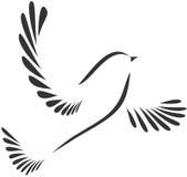 Duva eller fågel royaltyfri illustrationer