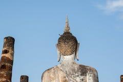 Duva på huvudet av en Buddha Arkivfoto