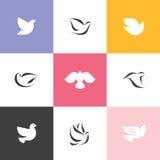 Duva Uppsättning av eleganta vektorsymboler och logoer royaltyfri illustrationer
