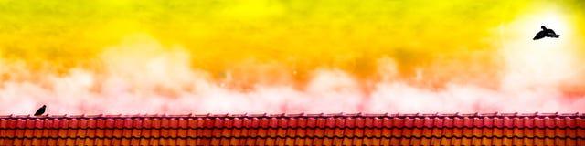 duvafluga till duvavänställningen på taket när solnedgång Royaltyfri Foto